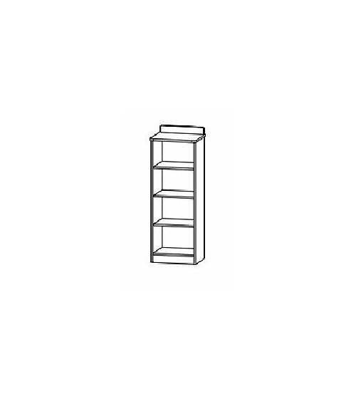 LIZI bookcase