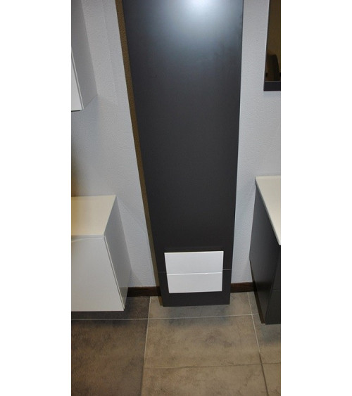 NEX wall cabinet